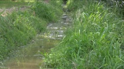 fossato di irrigazione