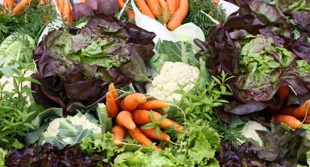 Gemüse - Arrangement