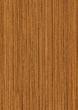 wood texture teak