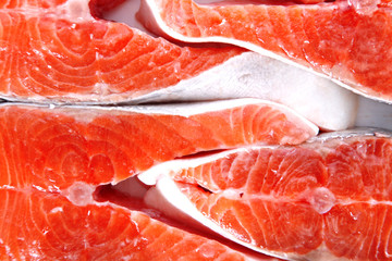 fresh salmon steaks on isolated on white