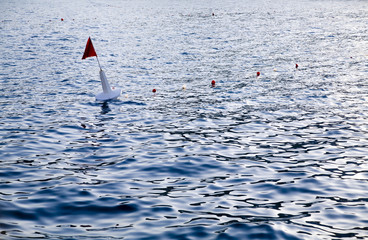 navigation buoy in sea water near a coasline