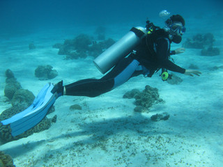 Underwater photographing