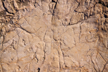 stone texture closeup