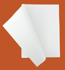 Unfolded blank newspaper