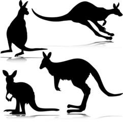 kangoroo vector silhouettes