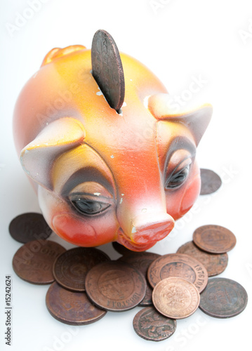 Piggy bank standing on money coins