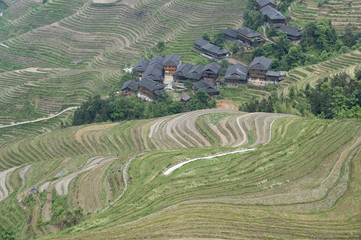 Jinkeng rice terraces in Guanxi, China