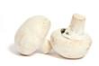 Leinwanddruck Bild - champignons de paris