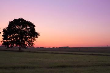 Harmonische Sonnenuntergangsstimmung auf dem Land