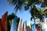 Surfbretter - 15266853