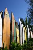 Surfbretter - 15266854
