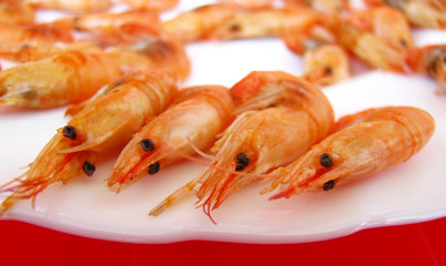 Shrimp on a white plate