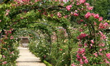 roseraie parisienne - 15293086
