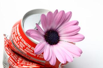 flor em lata amassada