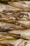 brisling norwegian sardines tin can vinaigrette oil poster