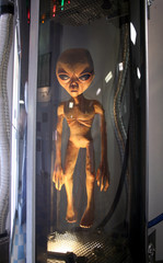 A Space Alien in a Stasis Chamber