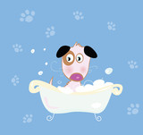 Cute dog bath. Bathing cute small doggie. VECTOR. poster