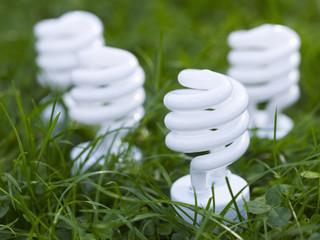Four energy saving spiral lightbulbs planted in grass