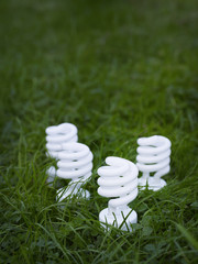 Four energy saving spiral lightbulbs planted in grass