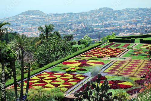 Le beau jardin botanique de Funchal