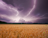 Storm over wheat - Fine Art prints