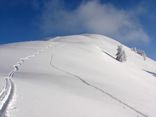Schi Tour Winter