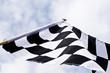 Motor spot flag