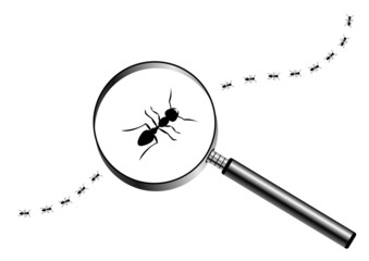 Magnifying glass with marching ants over white background