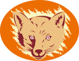 Red fox mascot poster