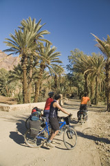Friends Cycling in the desertic Draa Valley, Morocco