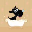 roleta: Black dog bath. Bathing black small doggie. VECTOR ILLUSTRATION.