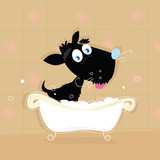 Black dog bath. Bathing black small doggie. VECTOR ILLUSTRATION. poster