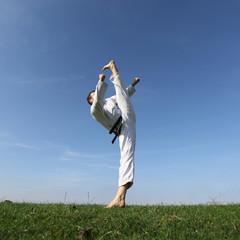 Taekwon-do Kick