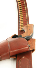 Pistol in Holster grip view