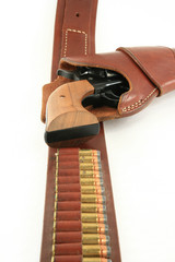 Pistol in Holster shell view