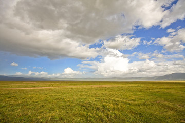 Inside Ngorongoro Crater