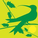 bird on sundown poster