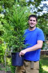 Planting a Leyland Cypress tree