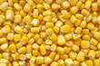 Sweetcorn closeup background