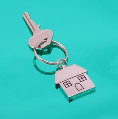 chrome house key on light green background