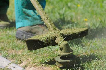 Jardinero podando