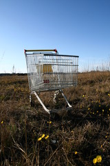 go shoping cart