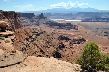 Dead Horse Point Overlook near Canyonlands National Park