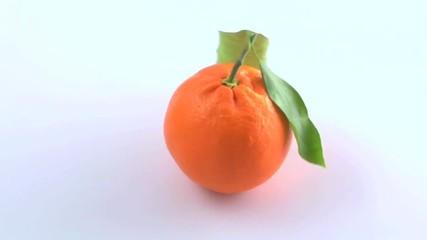 mandarino che gira