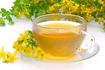 Tee Johanniskraut- tea St Johns wort 07