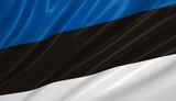flag of estonia. flag series. poster