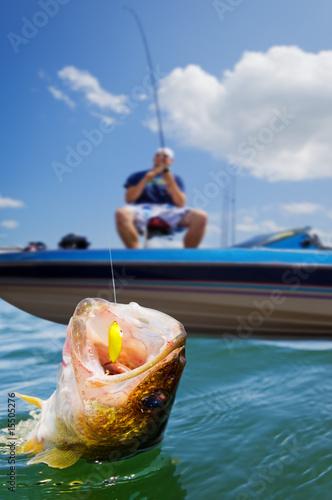 Sport fishing - 15505276