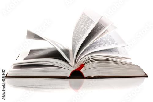 open book - 15508447