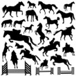 collection of horse vector