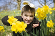 Young Boy Peering Through Daffodils Wearing Bunny Ears